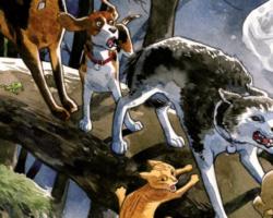 Beasts Of Burden – Rituais Animais é um dos melhores lançamentos deste ano!